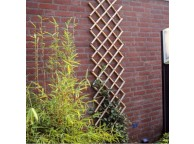 Treillage extensible en bambou 45 x 180 Nature
